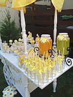 Организация лимонадного бара, фото 1