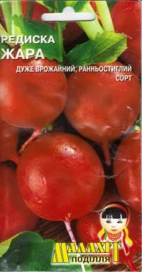 Семена редис Жара 20г Красный (Малахiт Подiлля)