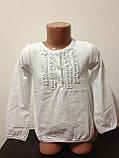 Детская одежда оптом Блуза для девочек нарядная оптом р.5-6-7 лет, фото 3