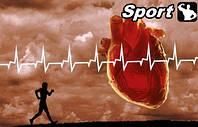 Эффективное выполнение кардиотренировок без вреда для сердца.