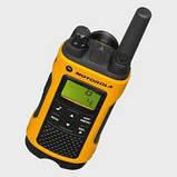 Радиостанция Motorola TLKR T80 (пара), фото 4