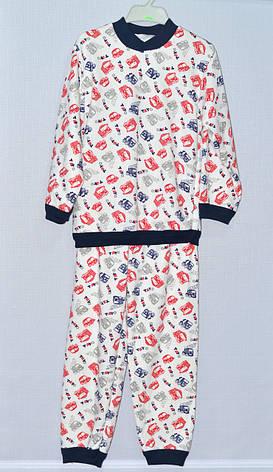 Детская пижама для мальчика Трикотаж Байка 8-10 лет, фото 2