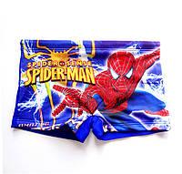 Детские купальные плавки  Spider Man / Спайдер Мен - №1464