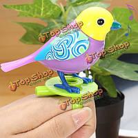Диги пение птиц чириканье соло хор голос музыка электрические игрушки