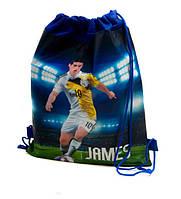Сумка рюкзак для обуви, 5 видов (футбол), 27-35 см