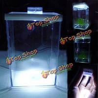 Мини-аквариума освещение аквариума рептилии коробка
