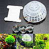 Аквариума аквариума мох плавающий шар природа живые растения выращивание