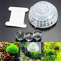 Аквариума аквариума мох плавающий шар природа живые растения выращивание, фото 1