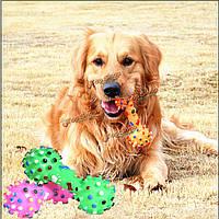 Погладить собаку игрушка кошка красочный пунктирная гантели кости животных скрипучие пищалка шарлатан звук игрушка жует гантели, фото 1