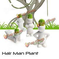 Мини белые травы куклу волосы мужчины садовое растение бонсай горшки керамические