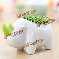 Поделки животных слон носорог посадка горшечных офисный настольный декор