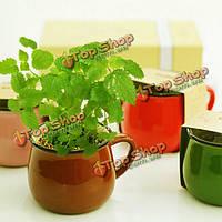 Керамика поделки чашки кофе мини растение в горшке декор Office для настольных завод