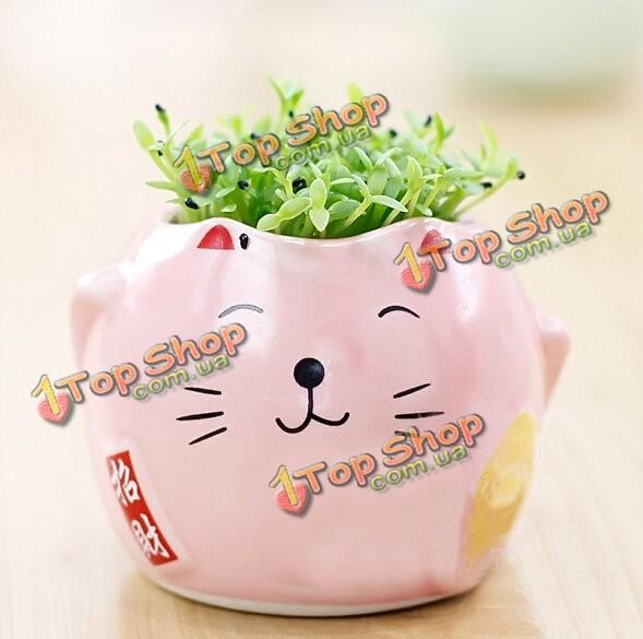 DIY Mini животное кошка зеленая трава в горшке столе офисного декора - ➊TopShop ➠ Товары из Китая с бесплатной доставкой в Украину! в Киеве