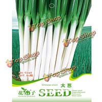 80шт зеленый китайский лук зеленый лук специи овощные семена сада лук-батун
