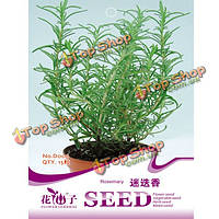 15шт розмарин семена специи розмарином лекарственный травы