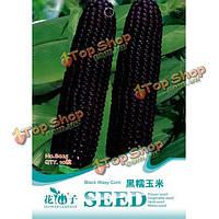 10шт черные плоды восковой кукурузы семена овощных растений сада