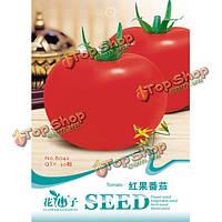 30шт помидор семян органических сад овощной реликвией урожай сухой семя