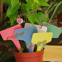 100шт 6x3см садоводство завод пластмассовых цветов теги Т-типа маркеров этикетки