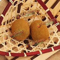 Искусственные киви фрукты моделирования киви плесени фестиваль украшения дома преподавания реквизиты