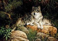 """Набор алмазной вышивки (рисования камнями) """"Волки. Отдых на камнях"""" 30х41"""
