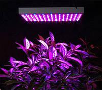 Фитопанель, лампа для растений, вазонов 14-15W (2 спектра: синий/красный)