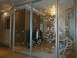 Встроенные шкафы купе на заказ  в спальню, прихожую, гостиную, фото 2