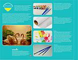 Картина по номерам Абрикосовый натюрморт, 40*50см, (КН2031), фото 9