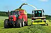 Особливості заготівлі якісного сінажу для збалансованої годівлі корів взимку