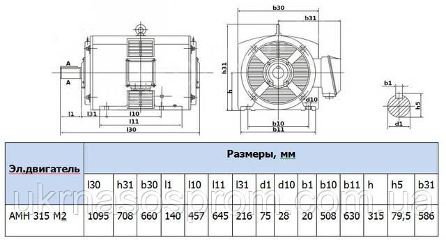 электродвигатель 4АМН315М2 5АМН315М2  цена производство
