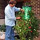 Выращивание в теплице и дома томатов, огурцов, растений - приспособление Плантация, фото 4