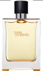 Hermes Terre d'Hermes туалетная вода 100 ml. (Хермес Терра Д'Хермес)