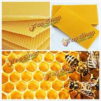 30шт сотовая основа Beeулей воск кадров воском Beeучет оборудования Bee улья гребенка мед кадры