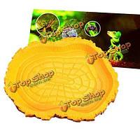 Рептилии черепахи вода блюдо еда миска амфибии геккон ящерица змей кормления блюдо