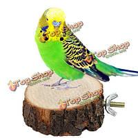 6см попугай деревянный животное стенд птица висит клетка окунь держатель платформы птица
