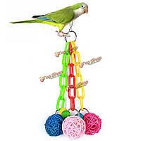 Животное птица висит игрушки ротанг мяч игрушка красочные пластиковые попугай домашнее животное птица сепактакрау стеллаж жевательные к