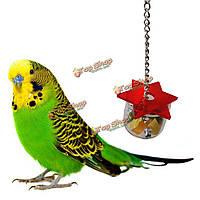 Кормление птицы коробки попугай домашнее животное птица шестигранной звезда акрил нагула фидерный коробка висит клетка качели жевать игр