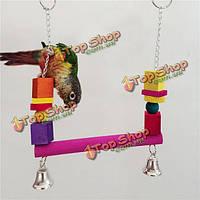Попугай птица деревянные качели висят жевать игрушки попугай кусается качели клетки стоят игрушки