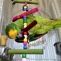 Попугай птица качели деревянные лестницы жевать игрушки попугай кусается качели называемые клетки игрушки