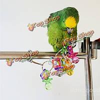 Красочные акриловые питомец птица попугай кусается Пек клетке попугая волнистый попугайчик играть в игрушки