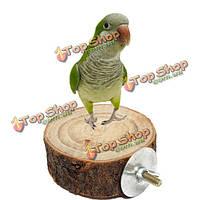 8см попугай деревянный животное стенд птица висит клетка окунь держатель платформы птица