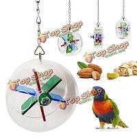Системы питания колеса домашнее животное птица игрушки попугай вися нагула игры лечить фидера