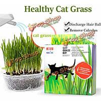 Волшебной кошки семян трав Mint REDUCT волос мяч пищеварение набор кошка травы