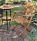 Водоотталкивающее тиковое масло Ксанол ISAVAL для террас и садовой мебели 0,75л≈5м²/слой, фото 2