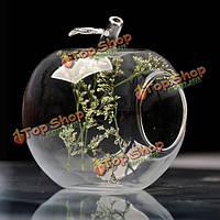 Форма яблока цветок стекло ваза мох микро-ландшафтный ЭКО-бутылка