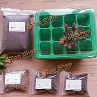 9 лунок пластиковые саженец коробки плантатора с комплектом смесь почвы для посева растений сочной