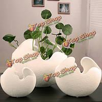Творческий керамическое яйцо в форме раковины настольные цветочные горшки комнатные растения