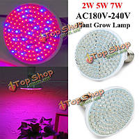 Лампа для выращивания рассады 2W E27