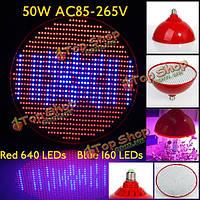 50Вт E27 640 красный 160 синий сад рост красный завод LED лампа парниковых завод саженец свет