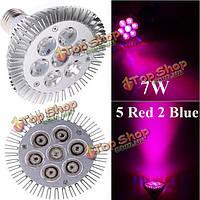 Фитолампа 7W E27 5 красный 2 синий LED