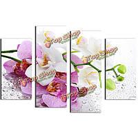 Орхидея картин 4шт сочетание напечатаны на холсте, бумаге бескаркасных рисования домашнего декора стены дар